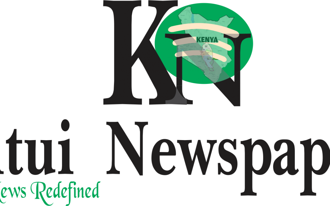 Fenxi Frenzy by Brian Peter – Kitui News paper